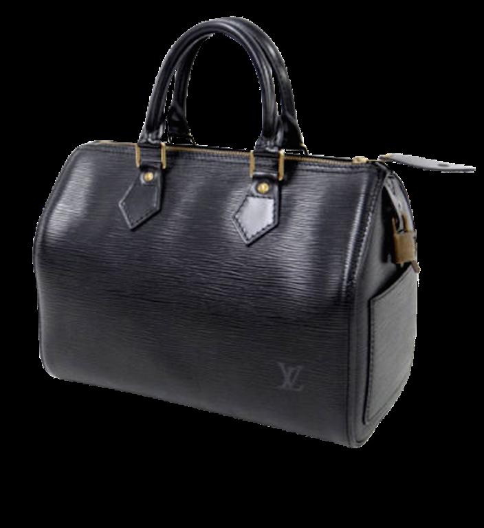 Louis Vuitton Speedy 25 Epi Black